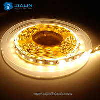PVC Lamp Body Material 5050 220v outdoor led strip