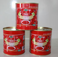 Organic fresh 850g*12tins tomato paste with FDA,ISO,HACCP,HALAL Certification China's tomato