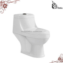 Chaozhou Ceramic White Washdown One Piece Toilet bowl