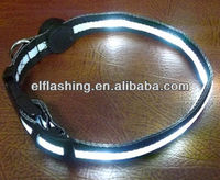 Hot Sell LED dog collars adjustable pet collars