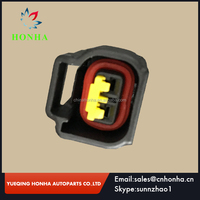 DJ7022Y-2.3-21 high quality 2 pin sealed wire harness 4.6 5.4 6.8 Ignition modular Coil Connector