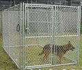chain link heavy duty dog kennel factory direct