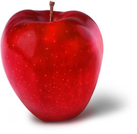 Red Delicious Indian Kashmiri Apple / Himachal Apple / SOPHIYAN APPLES RED DELICIOUS APPLES