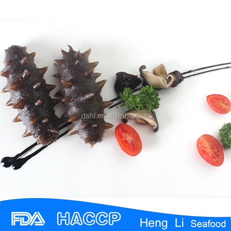 HL011 Nutritious fresh sea cucumber export hot sale
