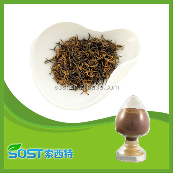 high quality pure natural instant black tea extract powder
