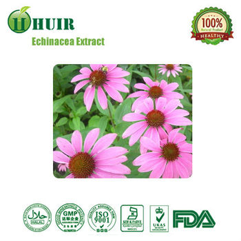 HACCP Supplier 4% Echinacea Extract Natural Echinacea Purpurea Powder Extract by UV