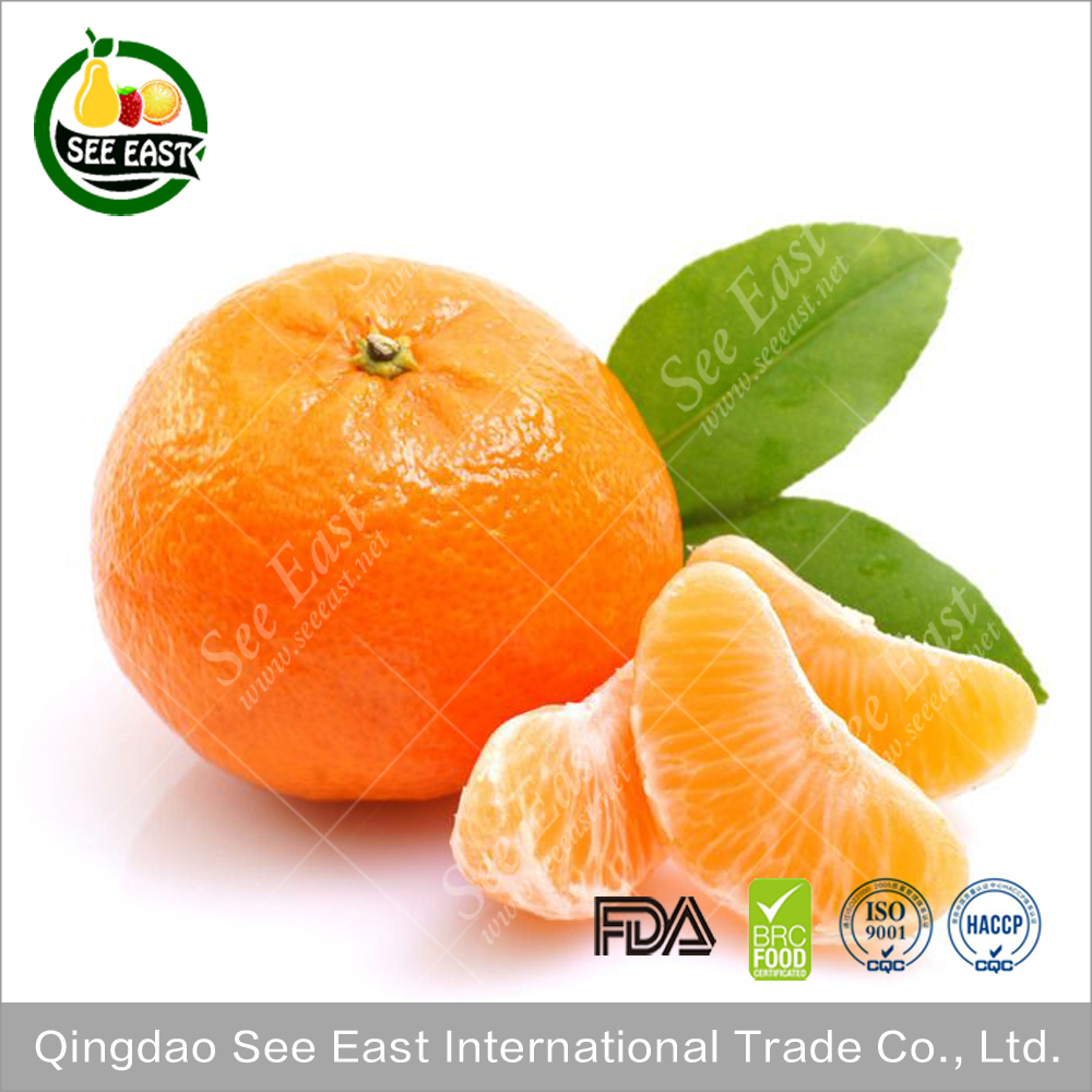 wholesale dried fruit freeze dried orange slices