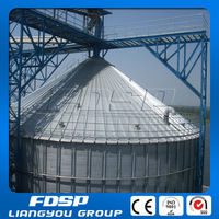 Wide Capacity Grain Bin Sheets Supplier/Grain Storage Steel Silo for Sale