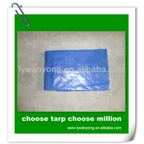 blue pe coated canvas reflective korea garden tarpaulin