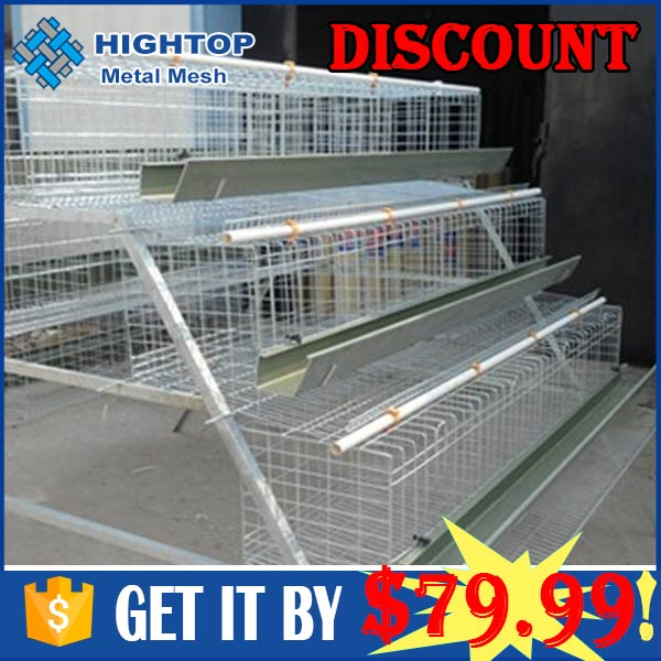 Chicken Cages In Kenya With Nairobi Stock And Agent And Farm Sample