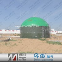 2015 China digester tank biogas/large biogas digester