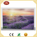 led lavender flower scenery new design canvas painting for wall decoration