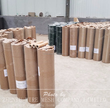 2x2 galvanized welded wire mesh (factory directly supply)