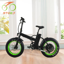 2017 new product factory price 48v 1000w hub motor folding electric bicycle for adults from china