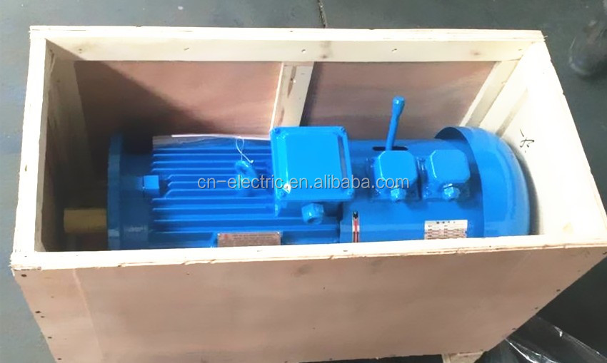 3 phae 700rpm 5000kw electric motor