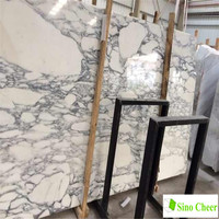 High quality Arabescato Corchia white marble slabs