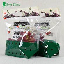 High quality fresh grape fruit bag air hole stand up pouch with ziplock fruit bag
