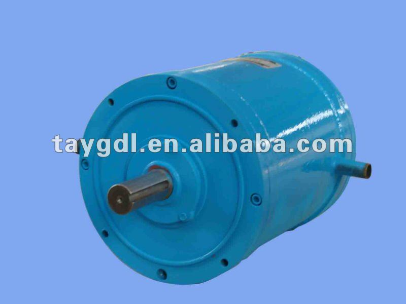 Brushless DC motor for electric car or boat