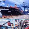 shipping service seafreight ocean freight from ningbo to uk