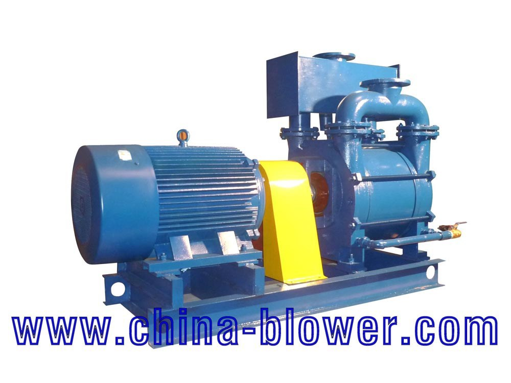 2BE Series Liquid Ring Vacuum Pump/ edwards vacuum pump/vacuum pump
