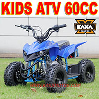 Automatic 300cc Dune Buggy
