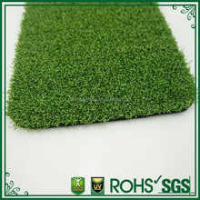dense appearance best sales lawn turf price good