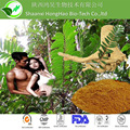 High quality herbal tongkat ali (long jack) root extract 200:1 powder for Man sexual health