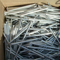 Wire Iron Common Nail for Construction Use
