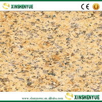 Fast Delivery Green Marinace Granite