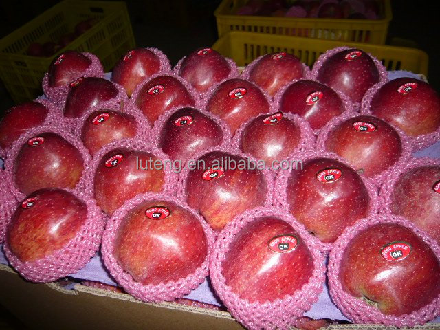 Red deliecious apples mature Huaniu apples summer red apple with high quality for whole sale