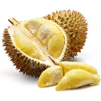 THAI FRESH MONTHONG DURIAN FOR SELL.