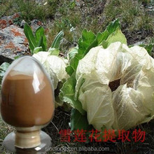 xue lian Nature Herb Snowdrop Extract Snow Lotus Herb Extract