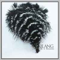 New Arrived Zebra Color Ostrich Feathers