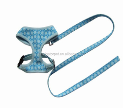 Firm Pet Dog Harness with Matching Leash