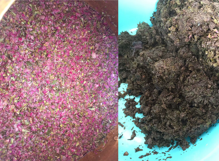 Natural Damash Rose Hydrosol Floral Water For Cosmetic wholesale rose water
