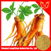 korean Red Ginseng Powder Gold Extract Powder