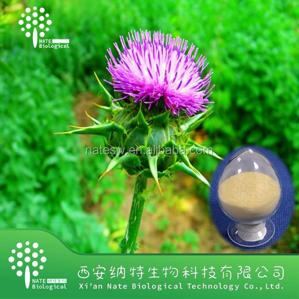 100% Natural Holy thorn extract Silymarin 80% Silybin 30% powder Holy thorn powder extract