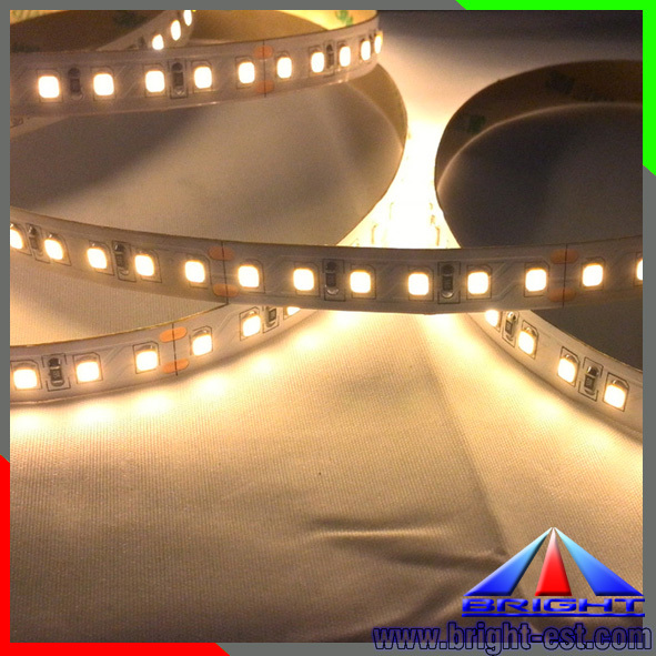good price high quality 60LEDs/M smd 2835 led strip LED strip light/s flexible led strip