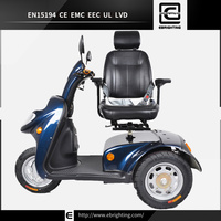 price electric double seat BRI-S06 motor scooters carriers