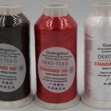 100% 120D/2 Polyester embroidery thread