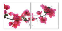Modern Promotional Picture Art garden scenery flowers painting in bright color