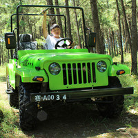 Adults Mini Jeep Willys/off road buggy 250cc