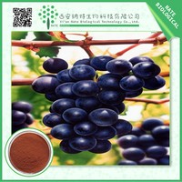 China wholesale market natural grape seed extract 20% by HPLC
