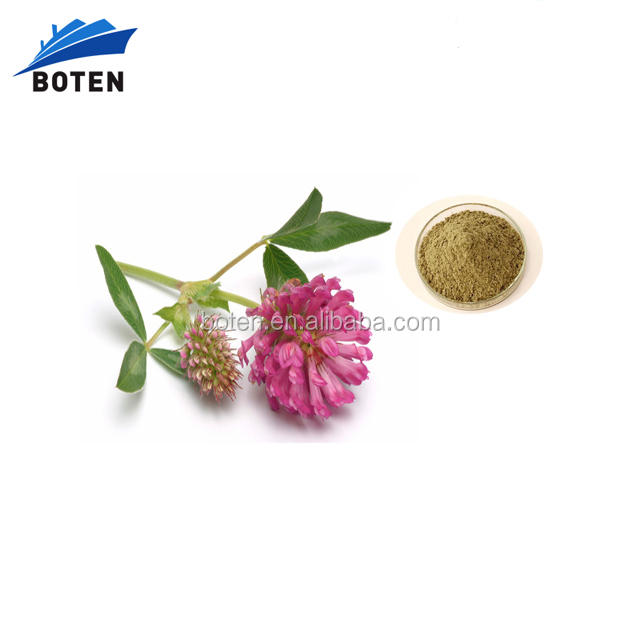 2016 Red clover p.e hot sale in stock