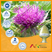 GMP factory Water Soluble Milk Thistle P.E. / Silybum marianum Extract Powder/Silymarin 80%&silibinin