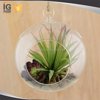Clear Glass Globe / Hanging Air Plant Terrarium Planter / Candle Holder