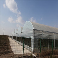 Transparent Agriculture Polyethylene Film For Greenhouse