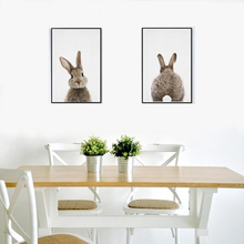 Digital print animal Rabbit wall art canvas painting