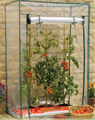 HOT SELLING SMALL TOMATO GREENHOUSE