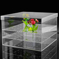 Acrylic Flower Case Clear Flower Box Hold 36 Roses
